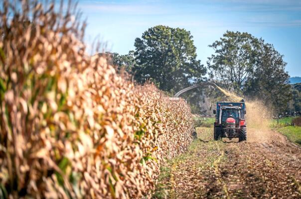 澳大利亚受大流行影响的农场将向亚洲提供劳动力