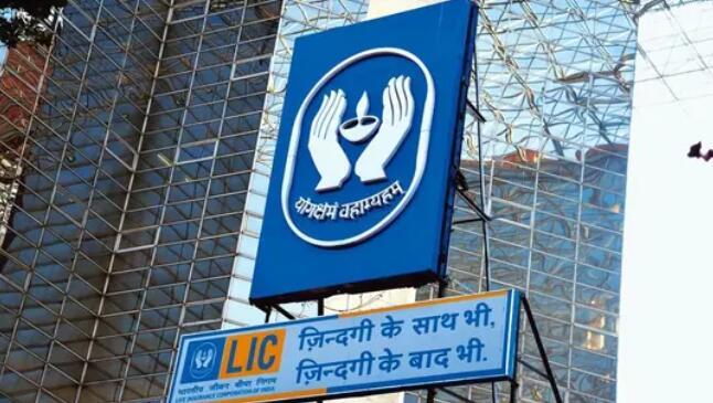 印度人寿保险公司在IPO前录得创纪录的股市涨幅